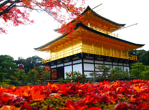 Kinkakuji Autumn